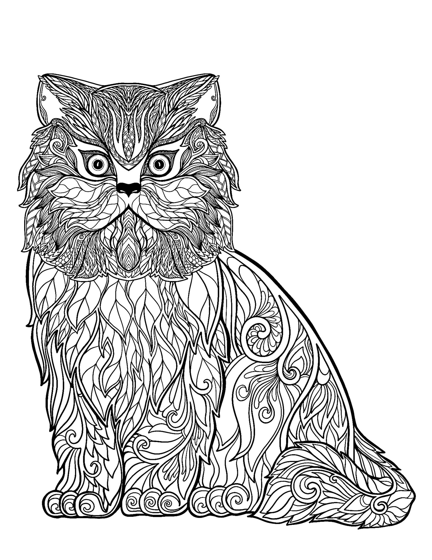 colouring pages of cats cat free to color for kids wise cat full of details of cats colouring pages