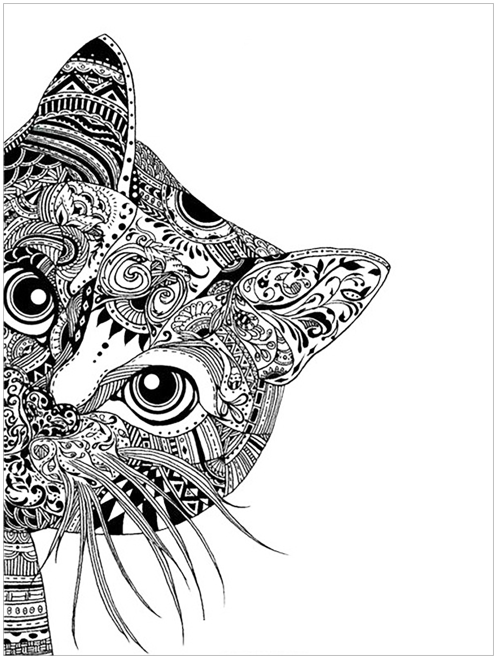 colouring pages of cats cat head cats adult coloring pages cats colouring pages of