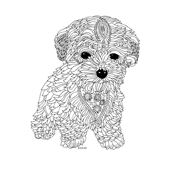 colouring pictures of pets dog coloring pages colouring pictures pets of