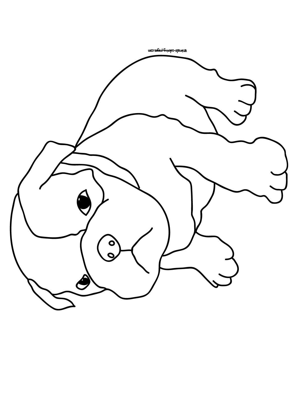 colouring pictures of pets puppy coloring pages best coloring pages for kids of colouring pets pictures