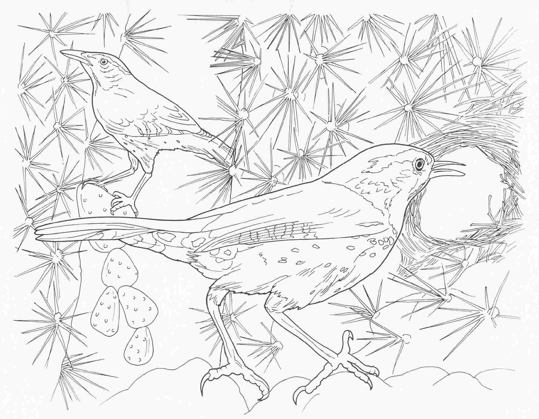 complicated coloring pages printable coloring pages difficult but fun coloring pages free and complicated pages printable coloring