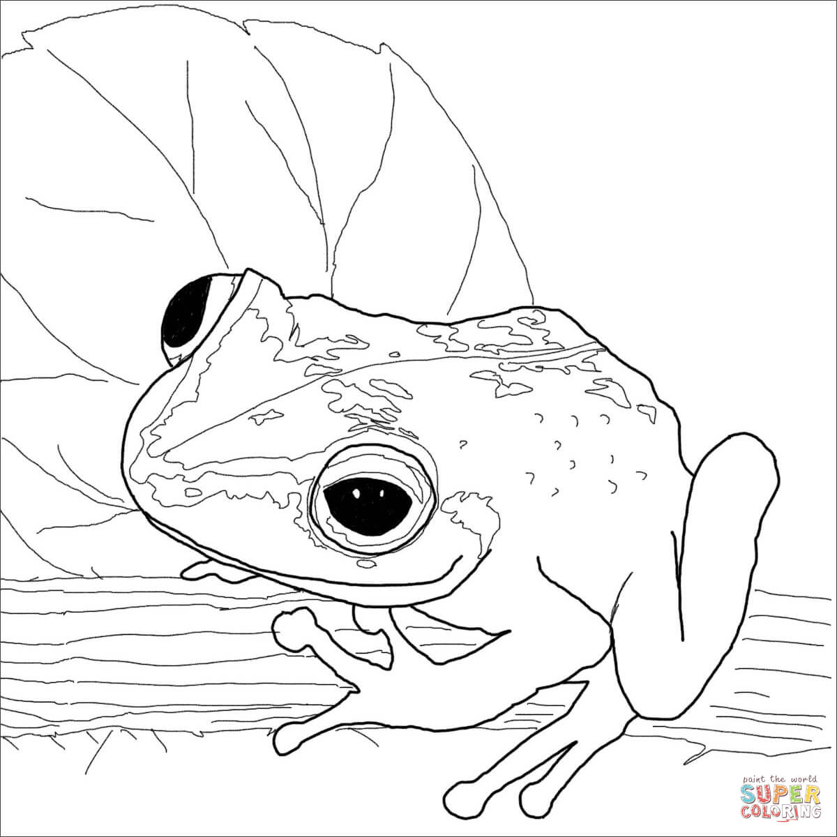 Coqui coloring page
