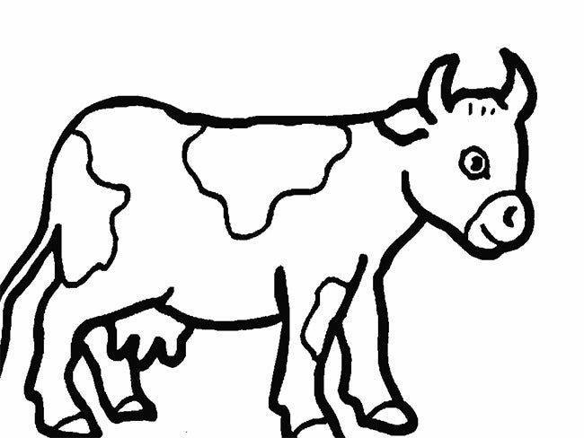 cow outline cow template animal templates free premium templates cow outline