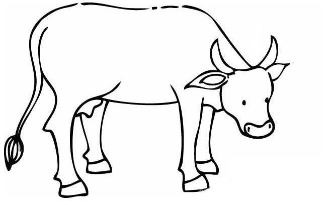 cow outline cow template animal templates free premium templates cow outline 1 1