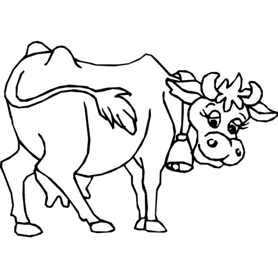 cow outline cows clipart outline cows outline transparent free for cow outline