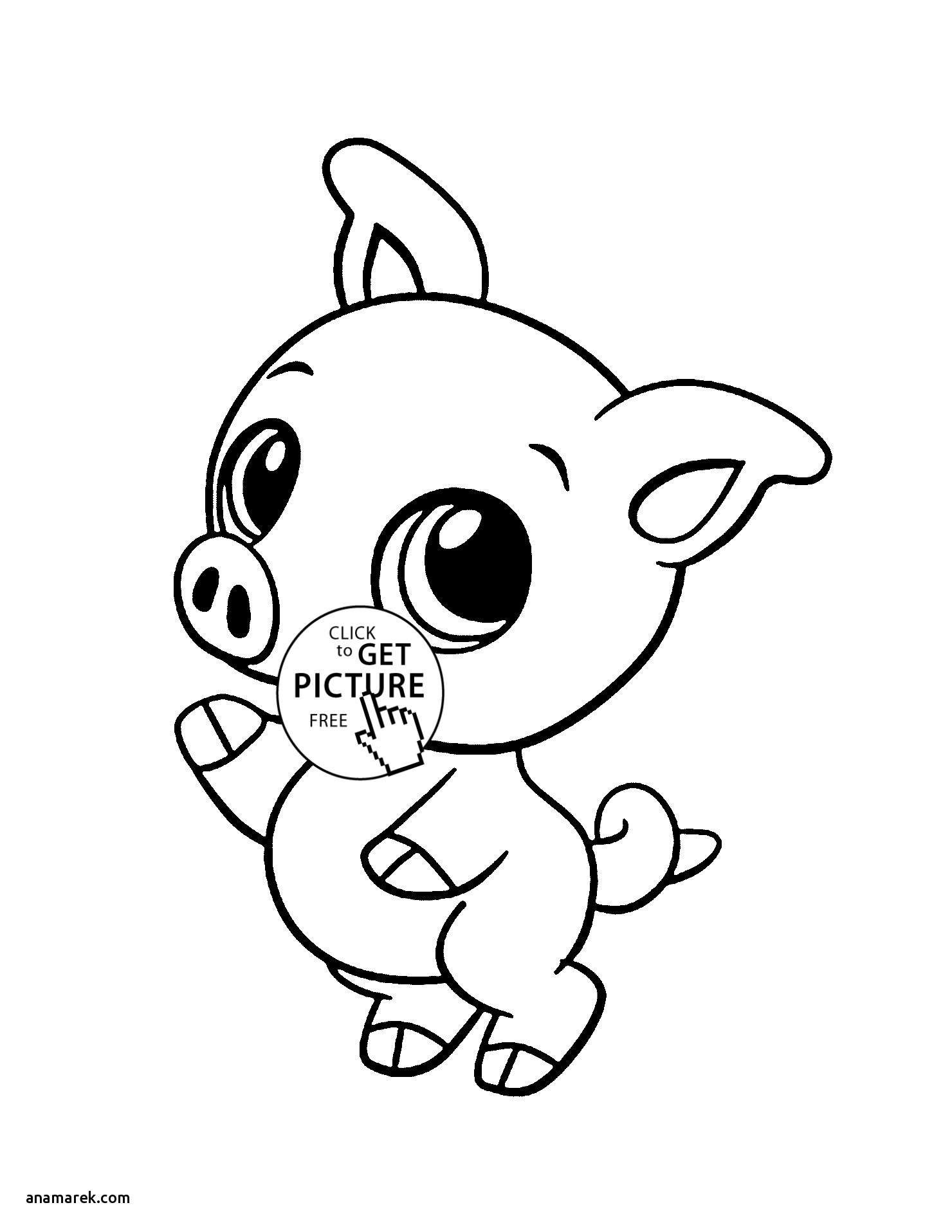 cute coloring pages of animals cute pig coloring pages download free coloring sheets of coloring animals pages cute