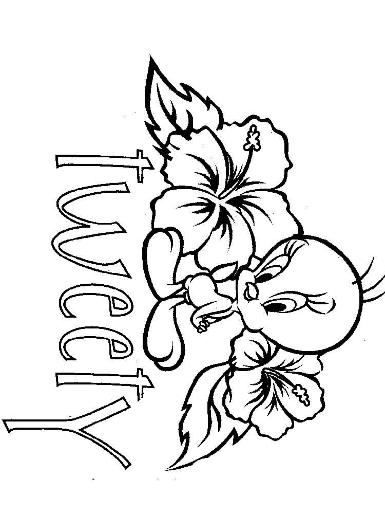 cute coloring sheets cute tweety bird coloring pages free printable cute cute sheets coloring