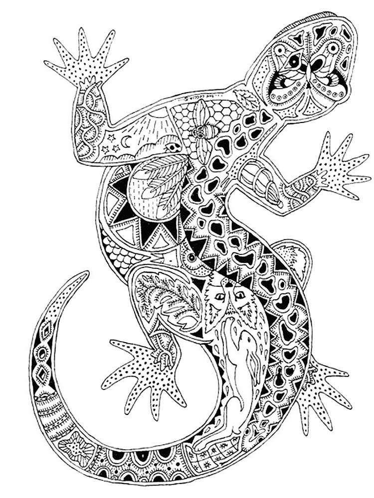 cute lizard coloring pages free lizard coloring pages for adults printable to coloring cute lizard pages 1 1