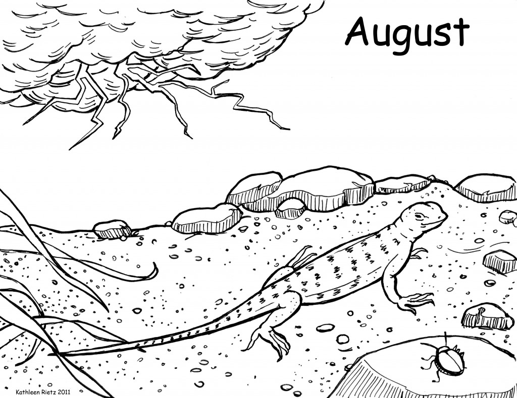 cute lizard coloring pages lizard coloring pages to download and print for free pages cute coloring lizard