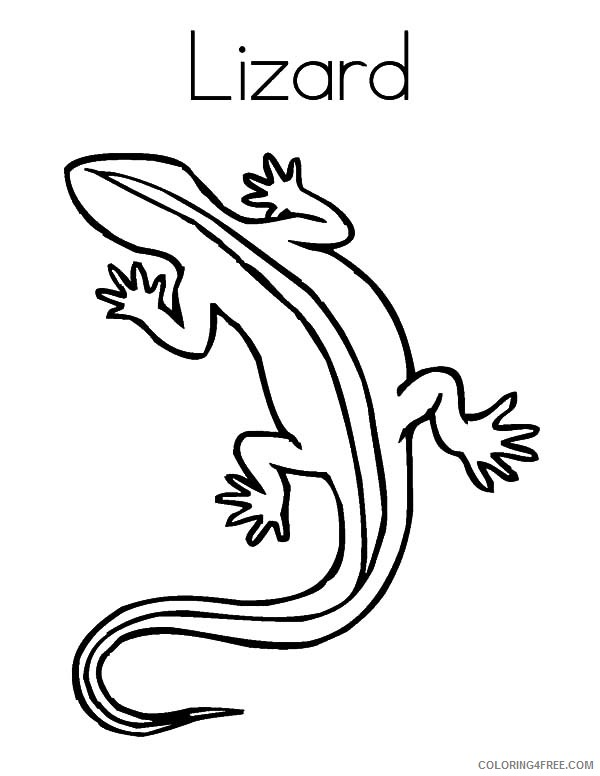 cute lizard coloring pages lizard drawing pictures at getdrawings free download cute pages lizard coloring