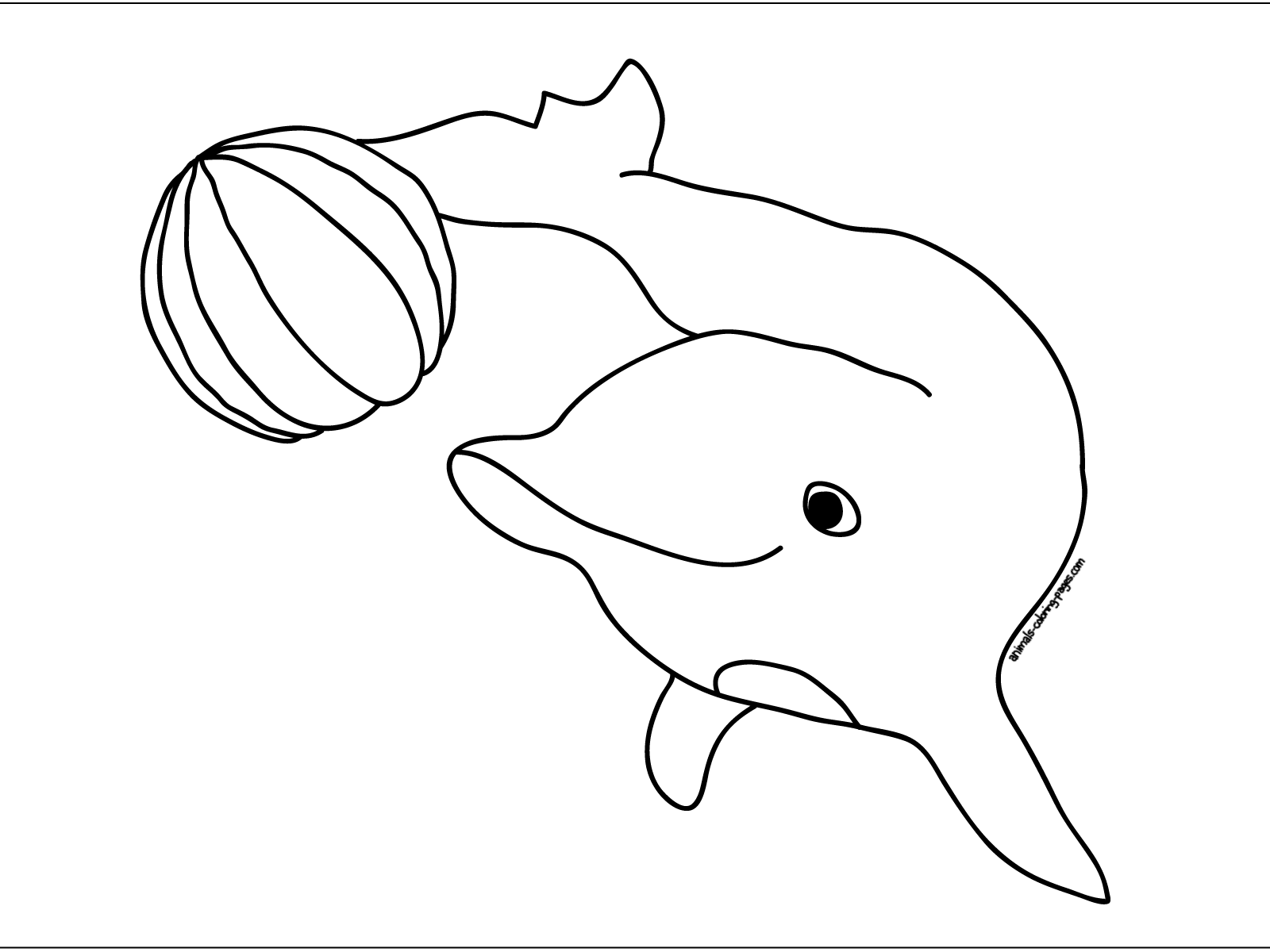 cute printable dolphin coloring pages dolphin coloring pages download and print for free dolphin cute printable coloring pages