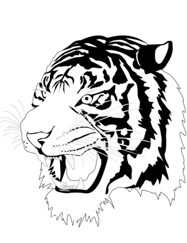 cute tiger face coloring pages cute tiger coloring pages kids coloring pages cute pages tiger face coloring