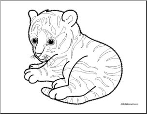 cute tiger face coloring pages tiger drawing easy at getdrawings free download face cute coloring tiger pages