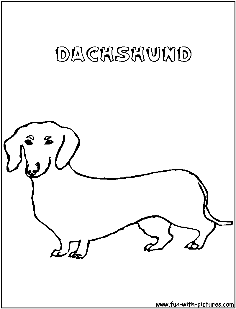 dachshund coloring pictures cachorro colorir png coloring pictures dachshund