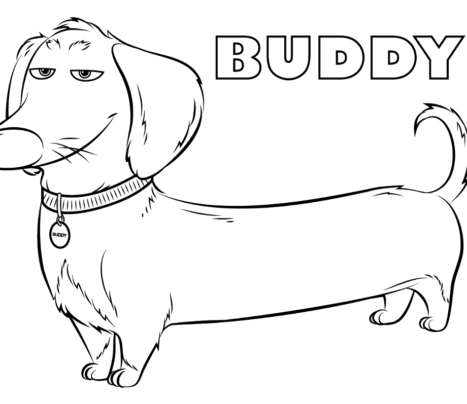 dachshund coloring pictures dachshund clipart coloring dachshund coloring transparent coloring dachshund pictures