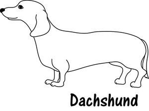 dachshund coloring pictures free dachshund clipart image 0515 1004 2704 1560 dachshund pictures coloring