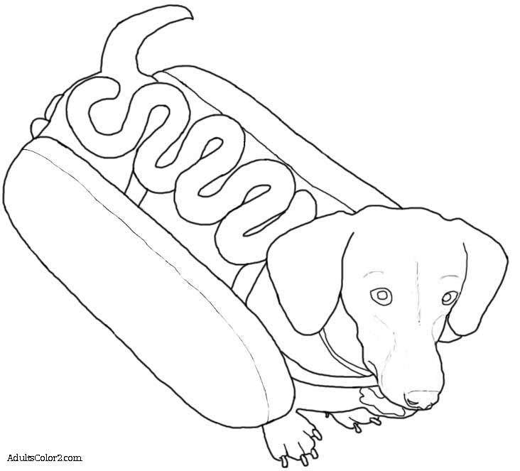 dachshund coloring pictures wiener dog coloring pages at getcoloringscom free coloring pictures dachshund