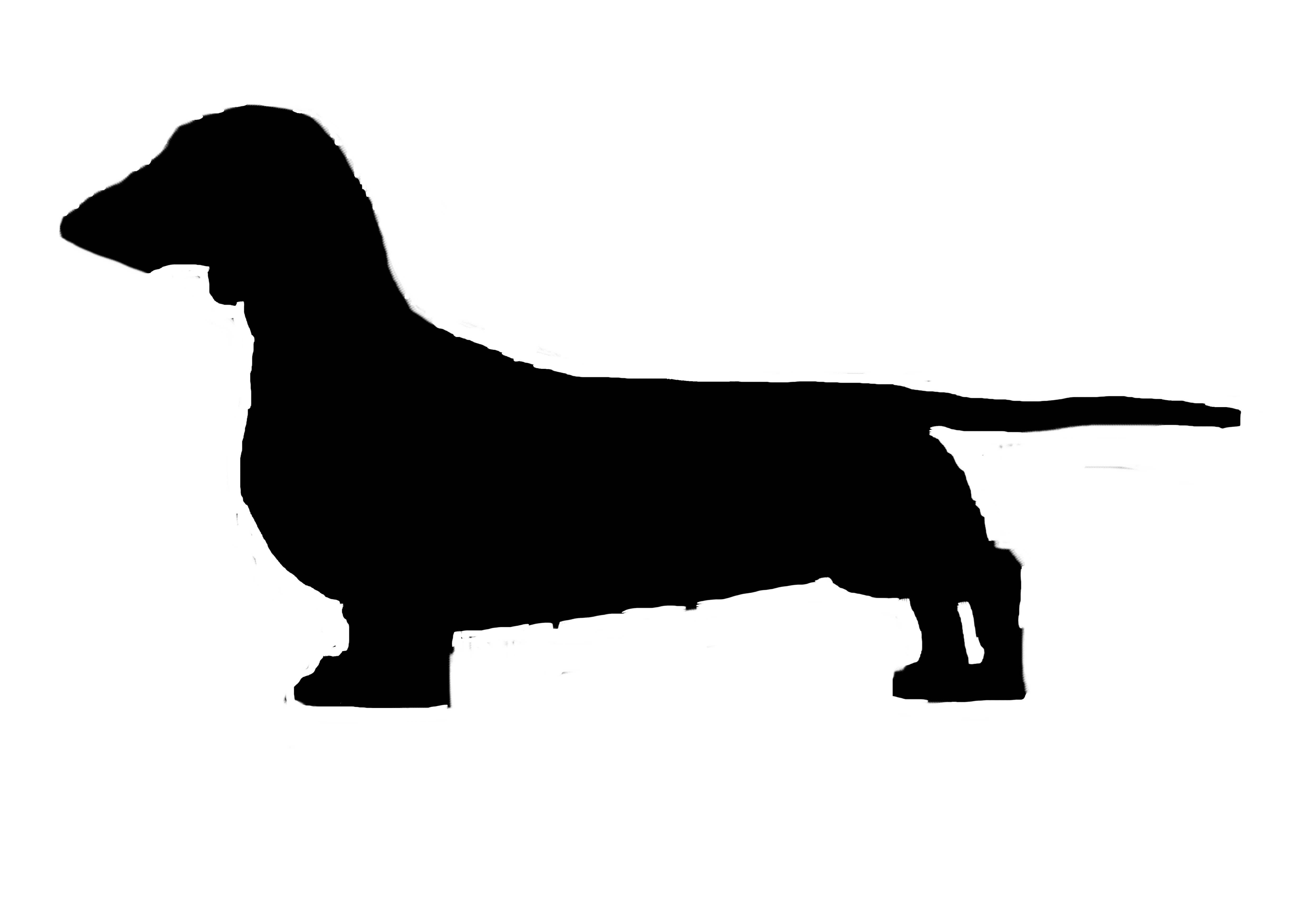 dachshund vector dachshund vector art at vectorifiedcom collection of vector dachshund