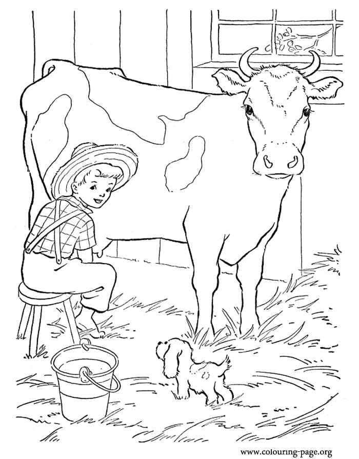 dairy cow coloring pages dairy cow coloring pages at getcoloringscom free dairy pages coloring cow