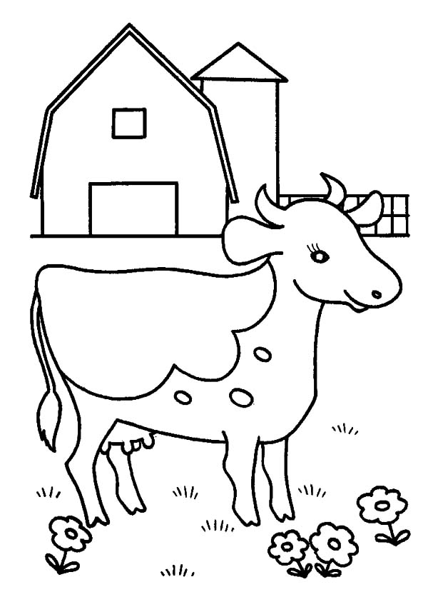 dairy cow coloring pages dairy cow coloring pages at getcoloringscom free pages coloring dairy cow