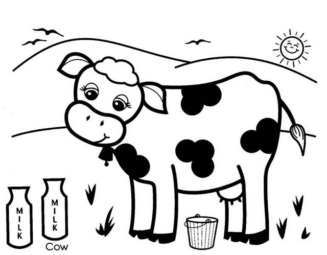 dairy cow coloring pages dairy cow coloring pages cow dairy pages coloring