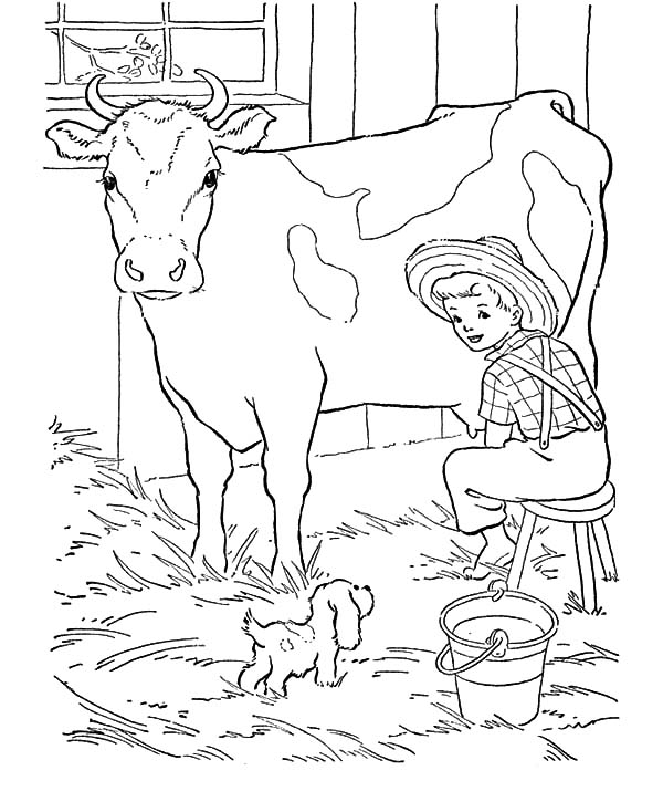dairy cow coloring pages dairy cow netart dairy cow pages coloring