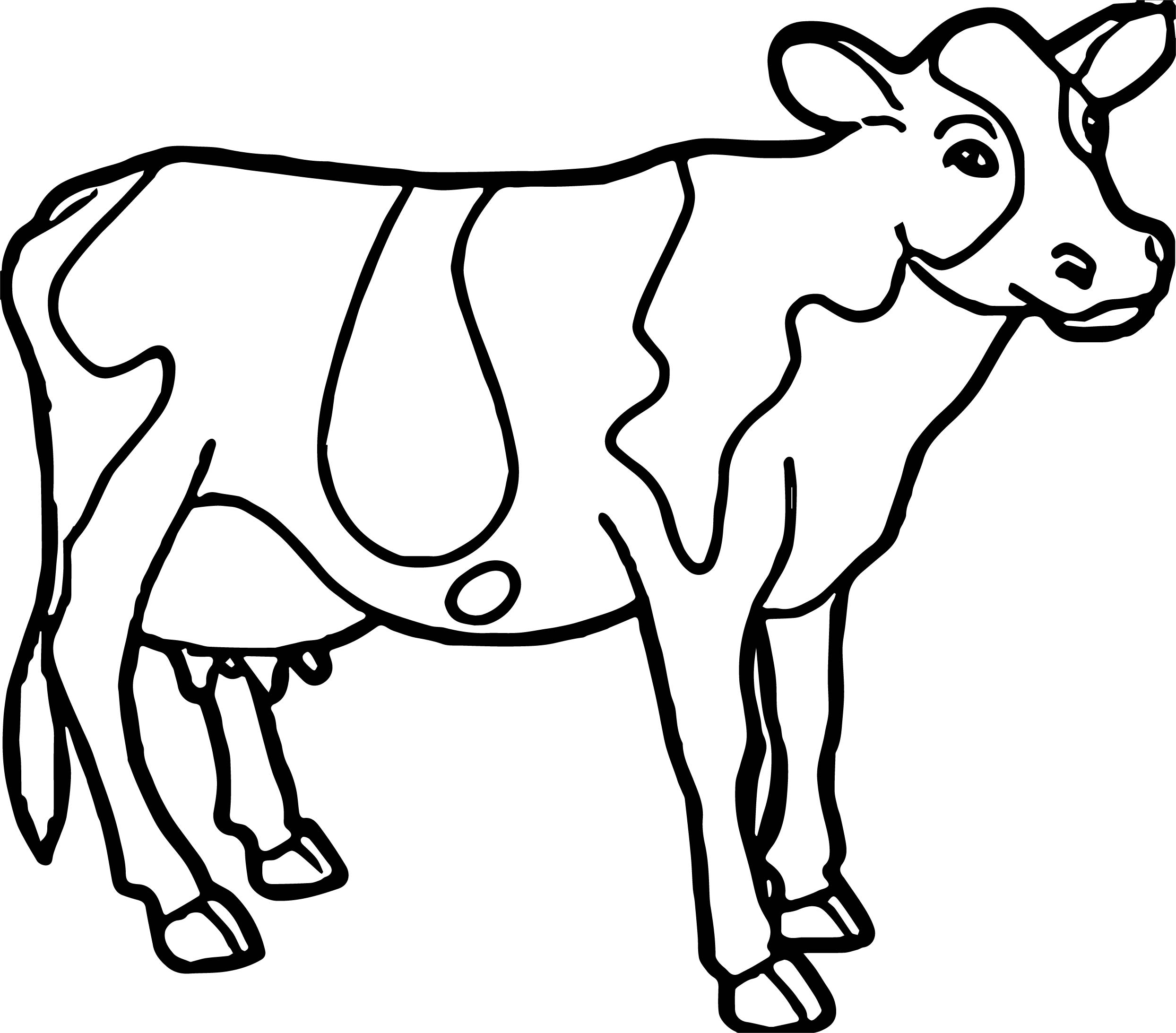 dairy cow coloring pages dairy cow with long eyelashes coloring pages netart in pages coloring cow dairy