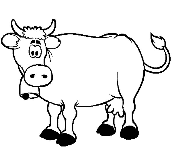 dairy cow coloring pages jersey dairy cattle coloring page free cow coloring cow pages dairy coloring