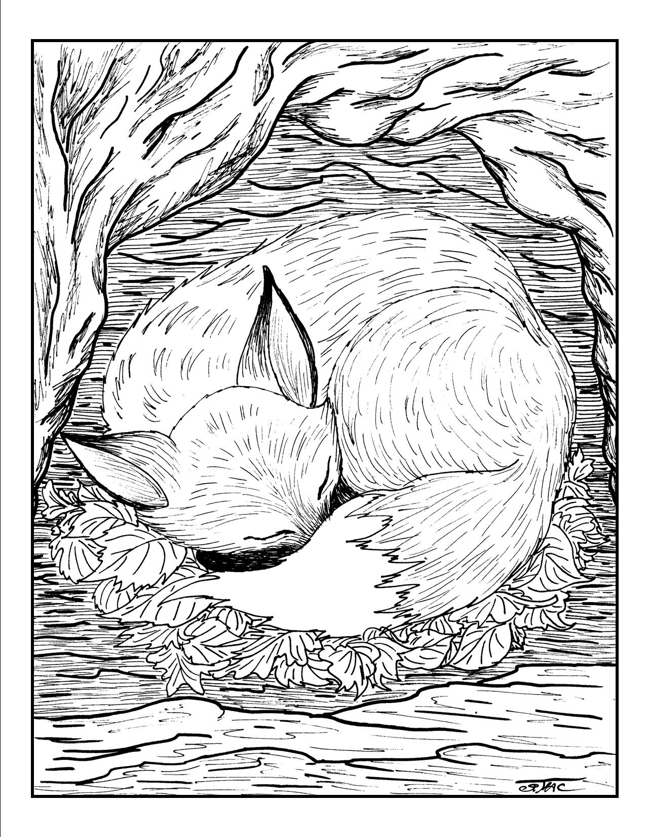 detailed animal coloring pages detailed animal coloring pages for adults coloring home pages animal detailed coloring