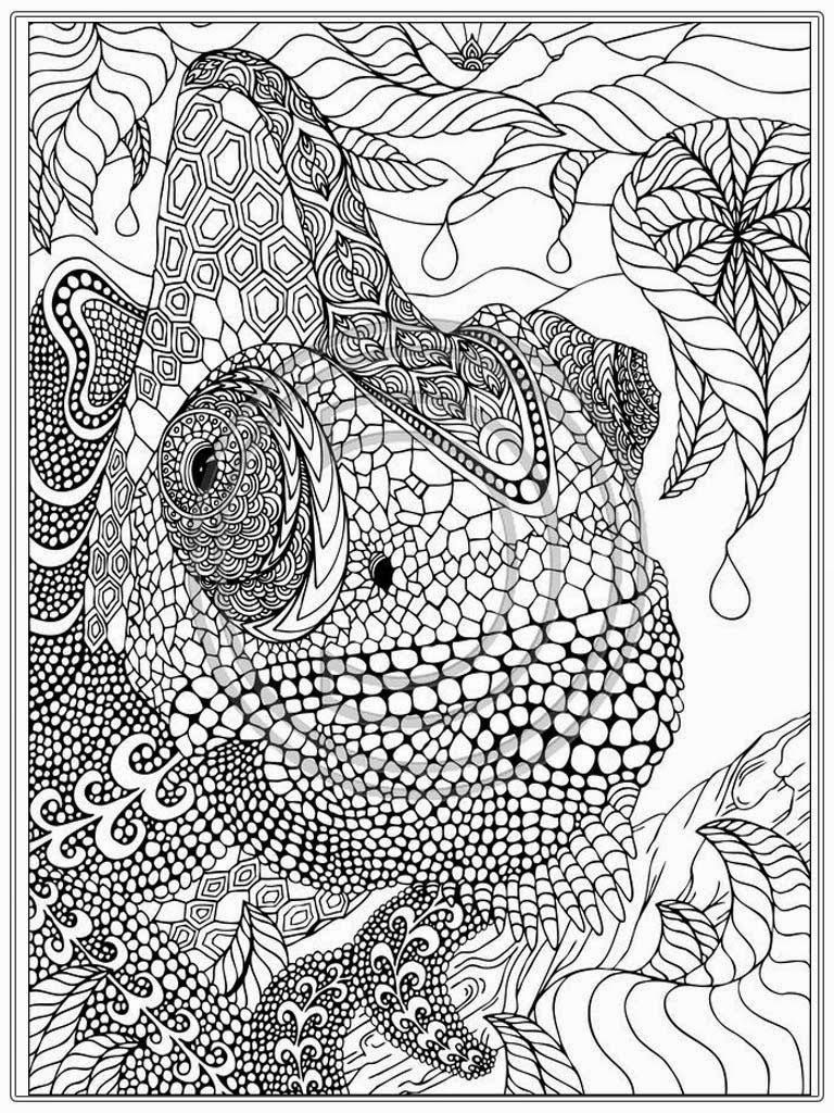detailed animal coloring pages free tiger coloring pages detailed animal coloring pages
