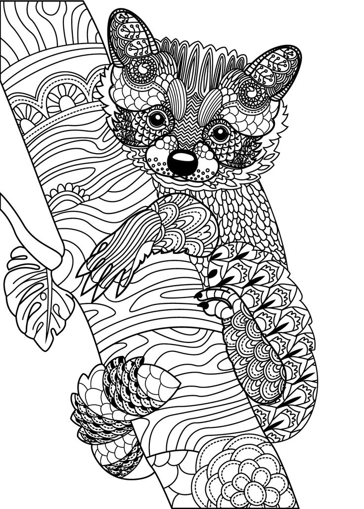 detailed animal coloring pages incredible detailed animal coloring pages axialentertainment coloring detailed pages animal