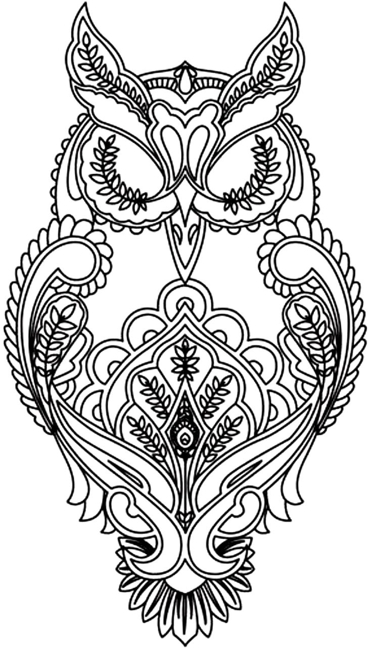 detailed animal coloring pages owl coloring pages for adults printable kids colouring animal pages coloring detailed