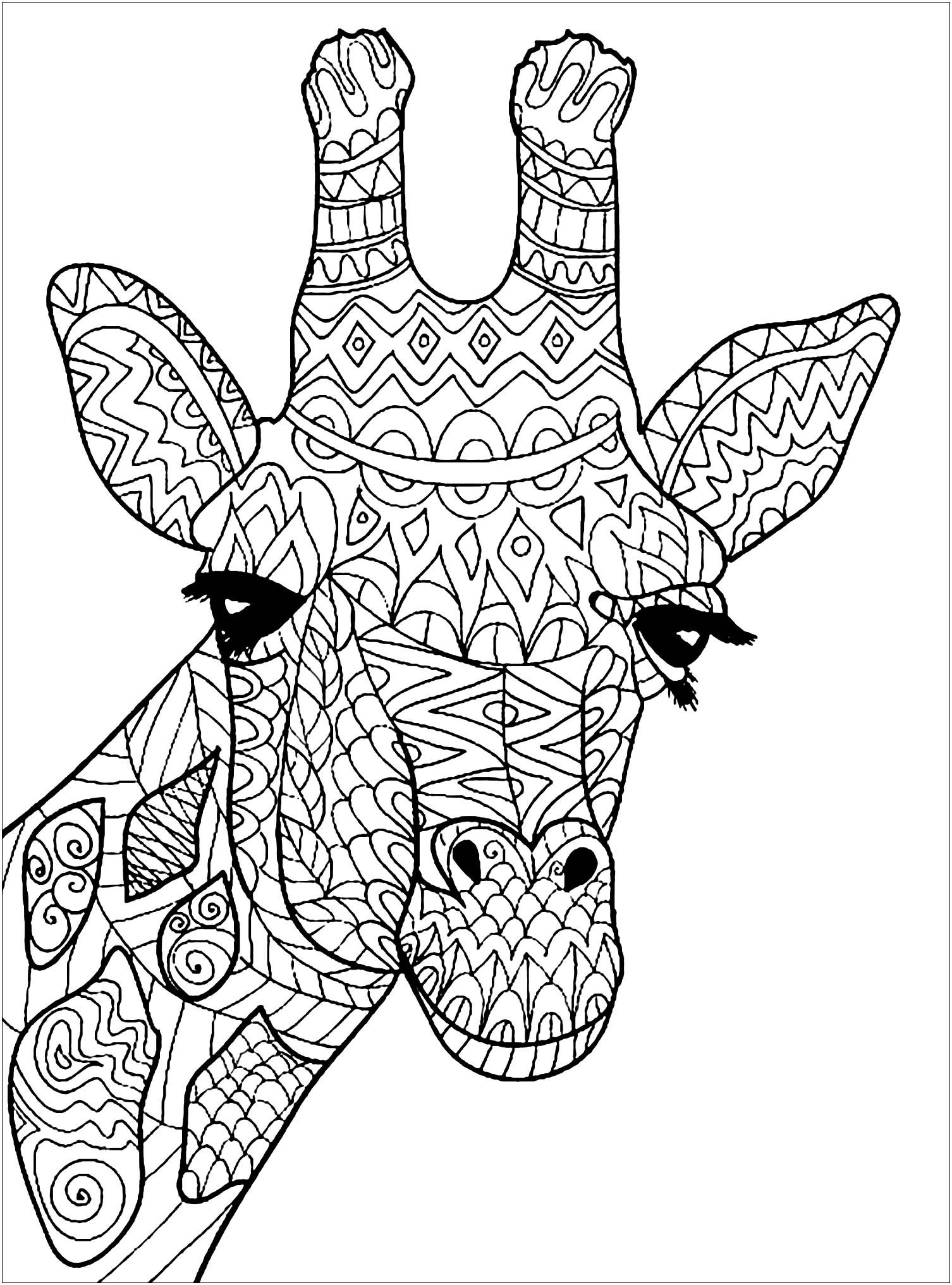 detailed animal coloring pages seahorse coloring pages for prek in 2020 horse coloring detailed coloring animal pages