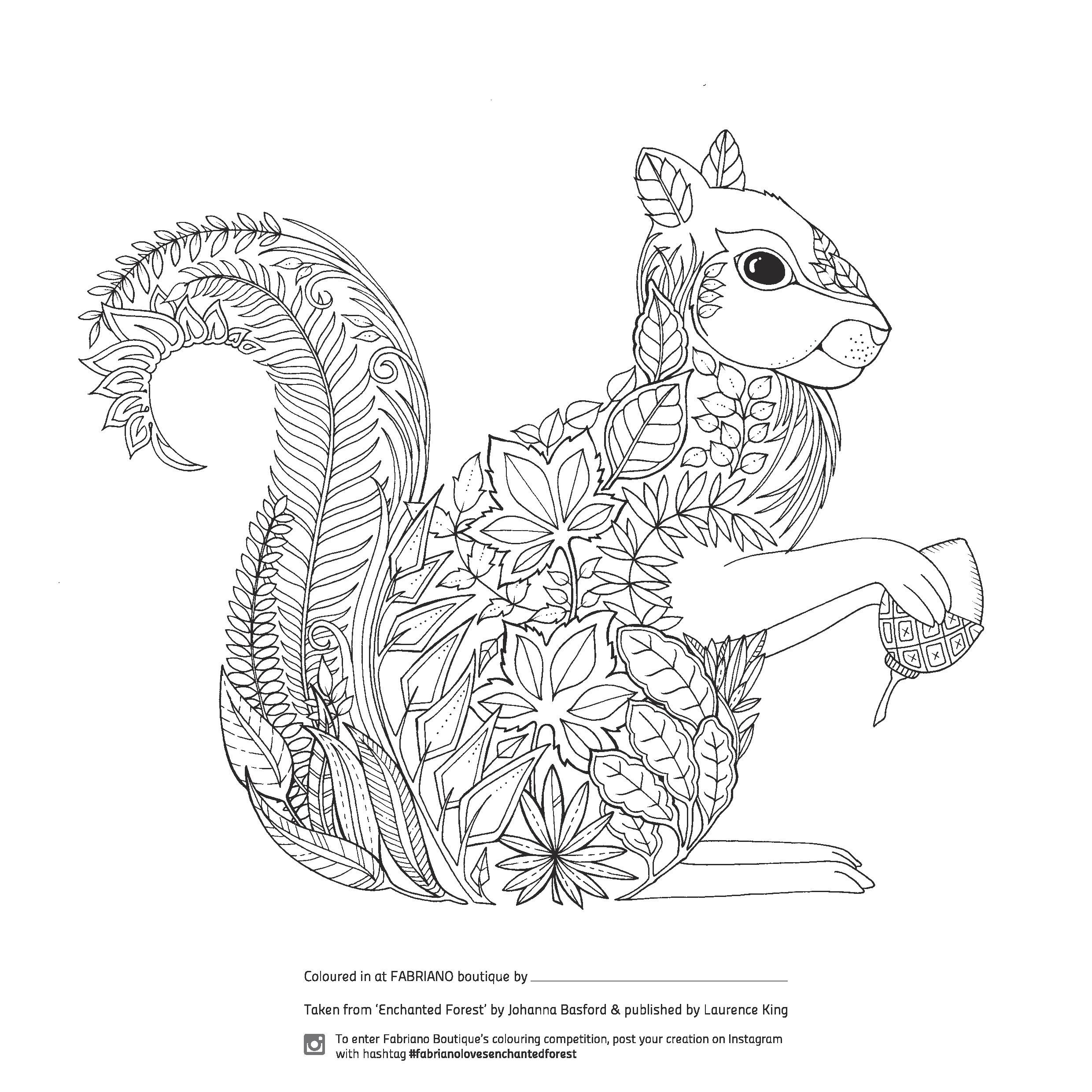 detailed animal coloring pages tiger coloring pages free coloring home detailed pages animal coloring