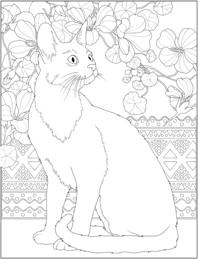detailed cat coloring pages cat coloring page advanced coloring page adult coloring pages coloring detailed cat