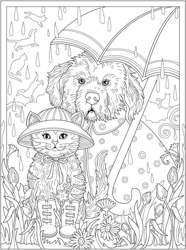 detailed cat coloring pages detailed cat drawing at getdrawings free download coloring detailed pages cat