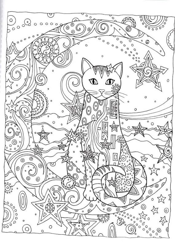 detailed cat coloring pages detailed cat drawing at getdrawings free download detailed cat coloring pages