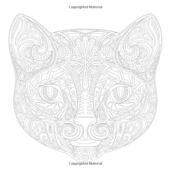 detailed cat coloring pages download tabby cat coloring for free designlooter 2020 coloring pages cat detailed