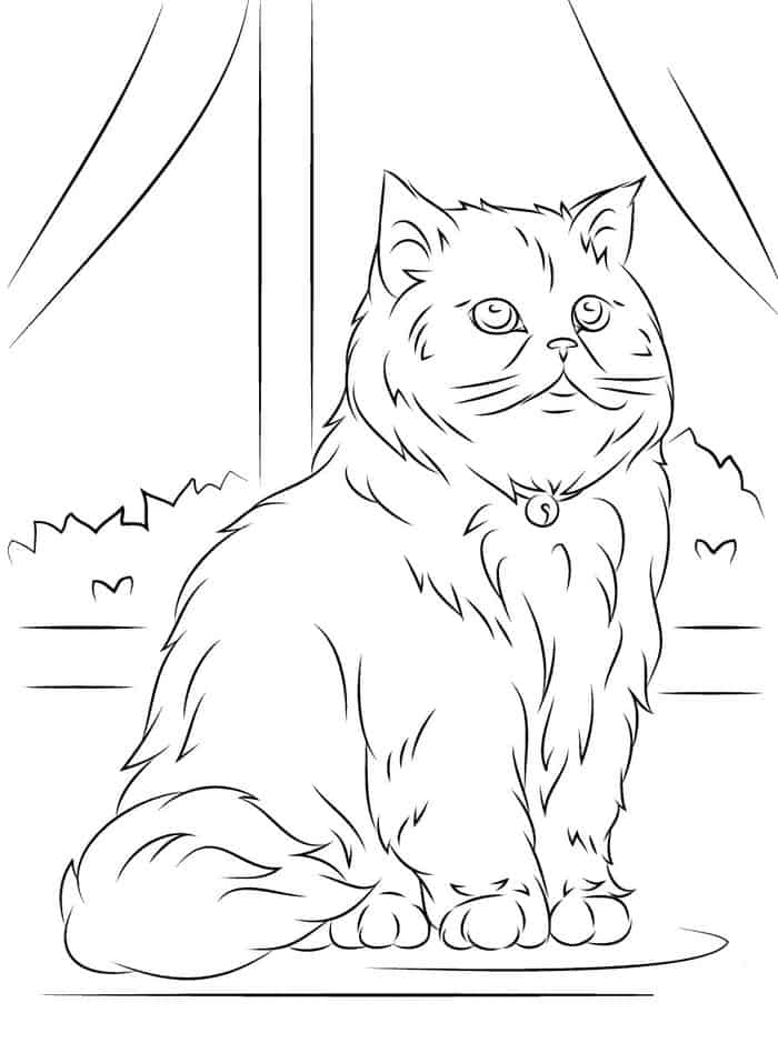 detailed cat coloring pages kids coloring pages detailed fish coloring pages for pages coloring cat detailed