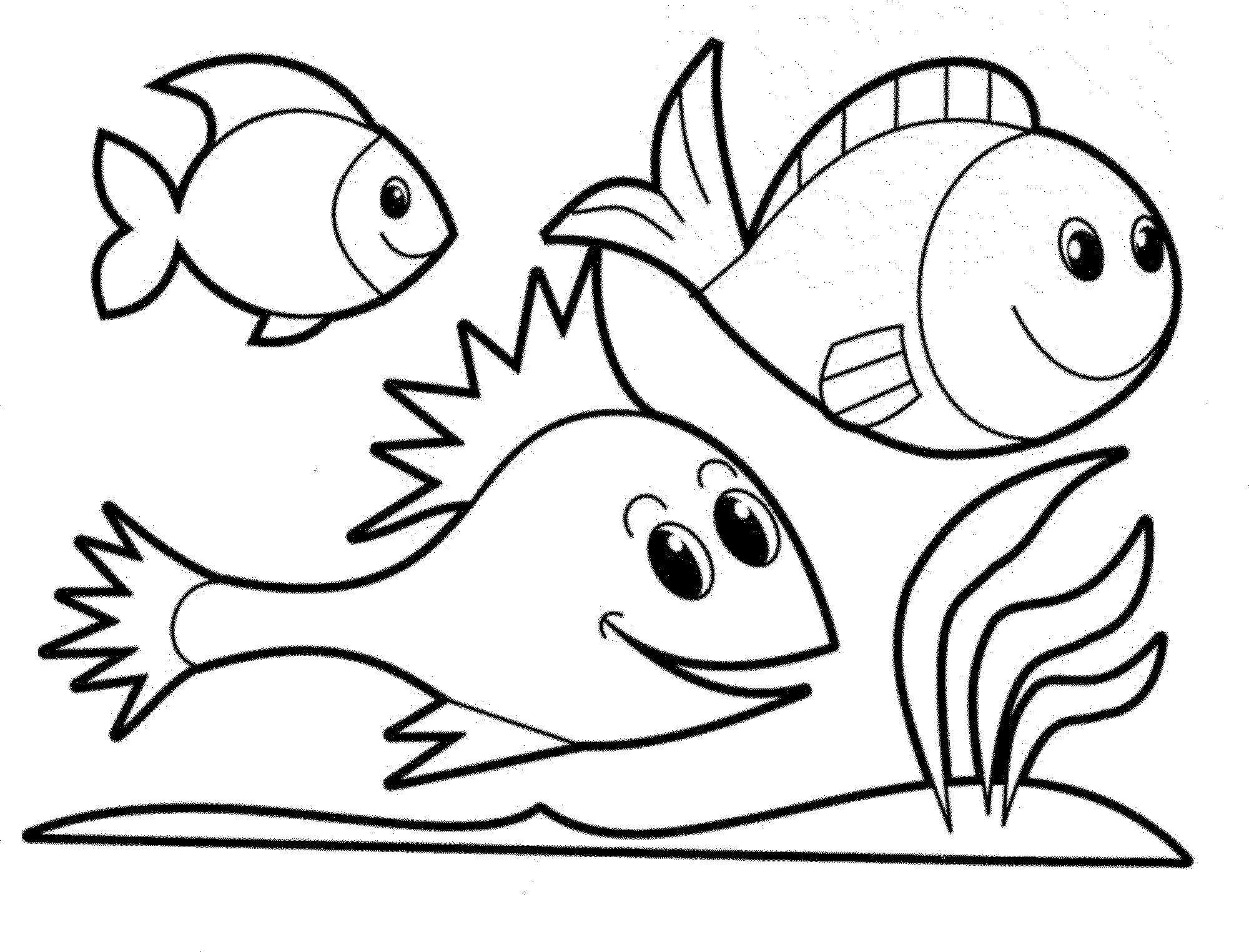 detailed fish coloring pages adult free fish coloring pages realistic coloring pages detailed fish pages coloring