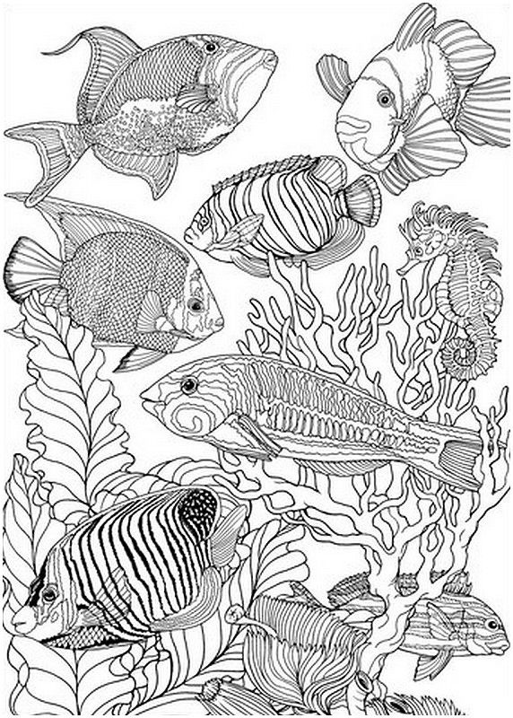 detailed fish coloring pages detailed fish coloring pages coloring home fish pages coloring detailed