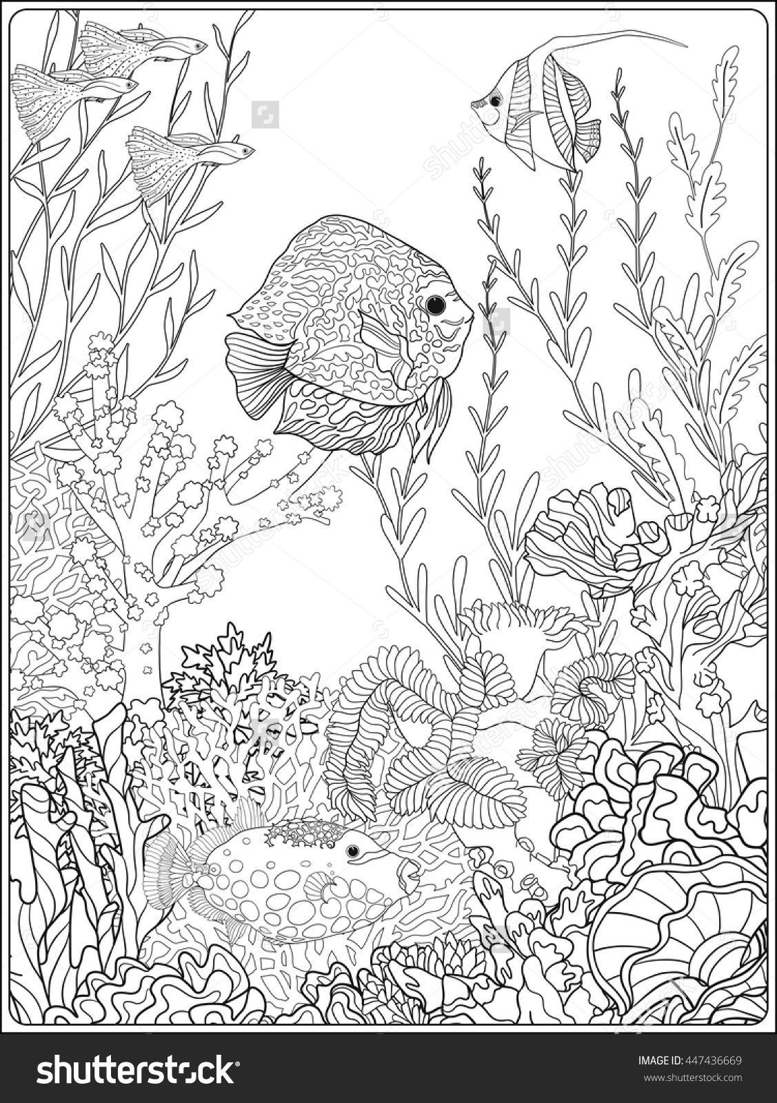 detailed fish coloring pages detailed landscape coloring pages for adults google fish detailed pages coloring