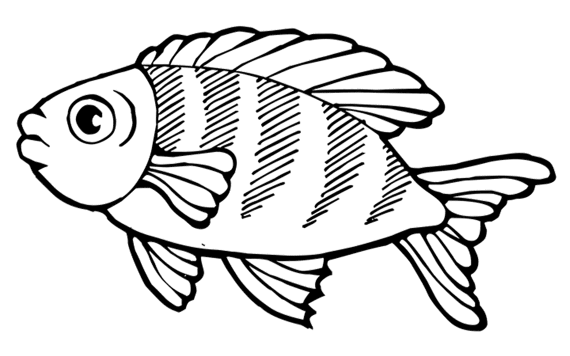 detailed fish coloring pages detailed ornamental sketch of a fish stock vector pages detailed fish coloring