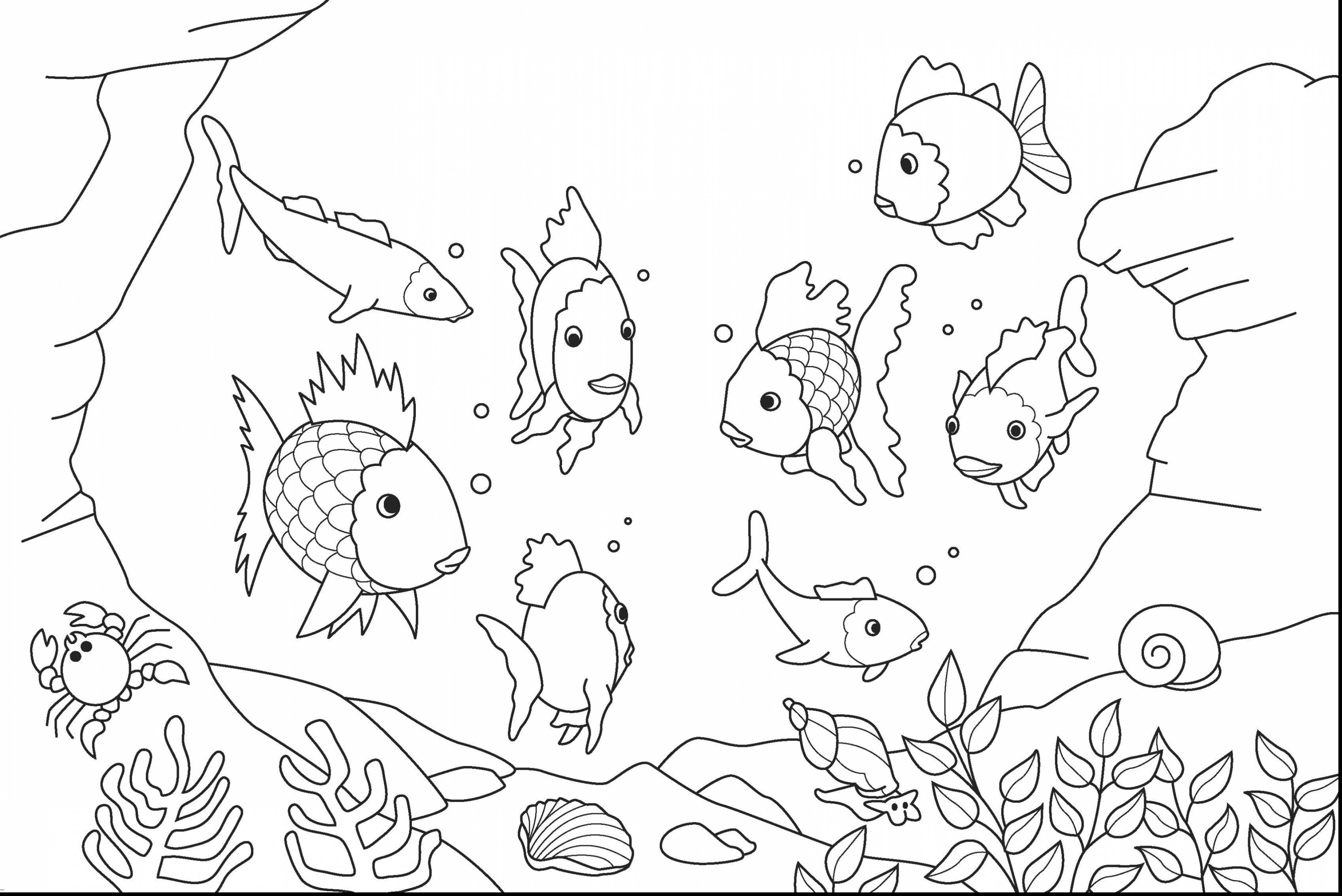 detailed fish coloring pages fish coloring pages colouring adult detailed advanced fish coloring pages detailed