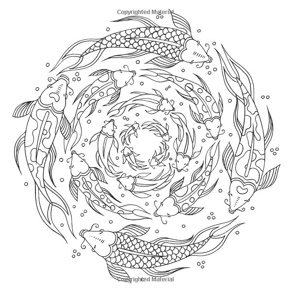 detailed fish coloring pages free life cycle coloring pages with images fish coloring detailed pages fish
