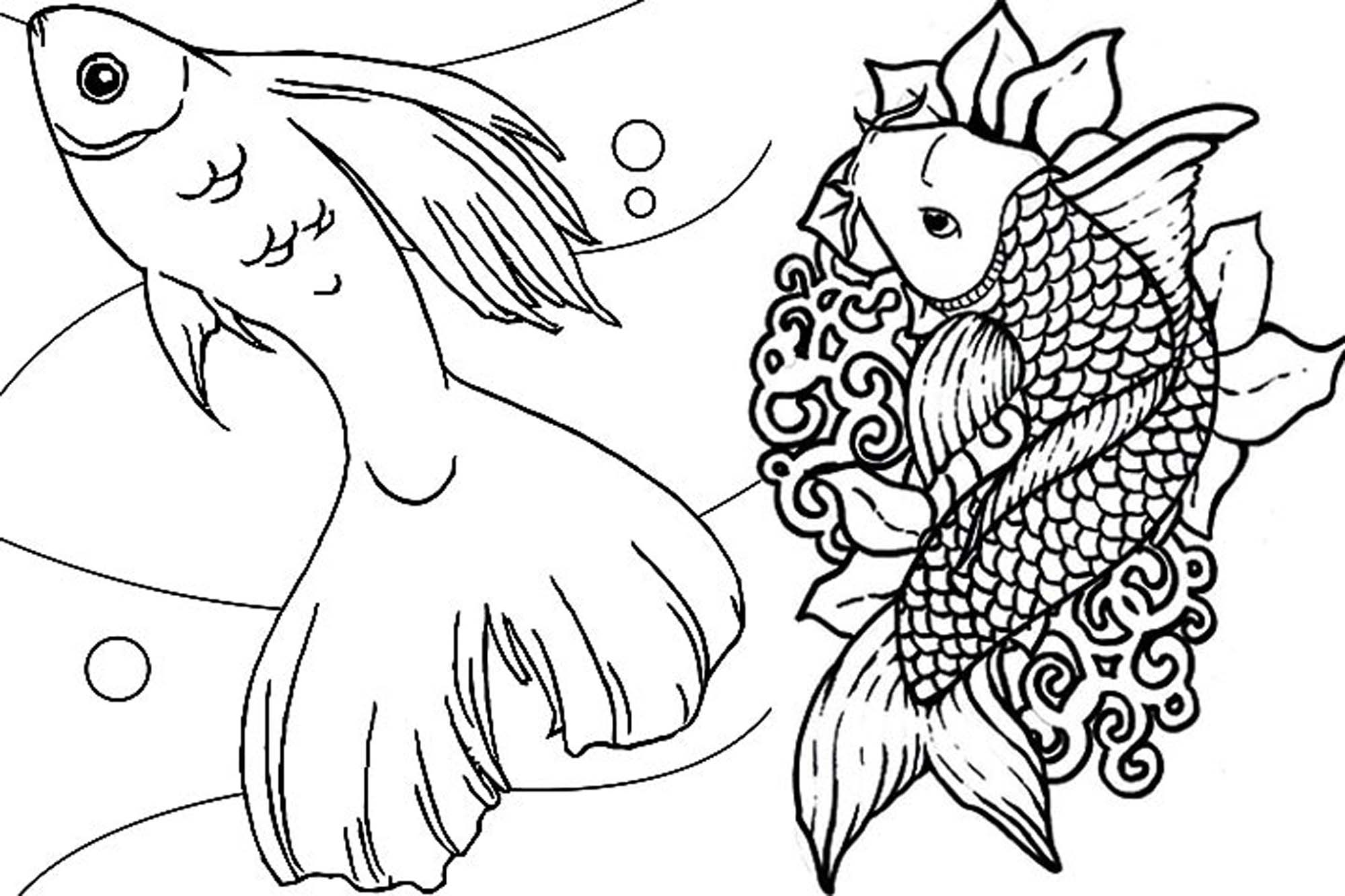 detailed fish coloring pages free printable adult coloring page tropical fish fish coloring pages fish detailed