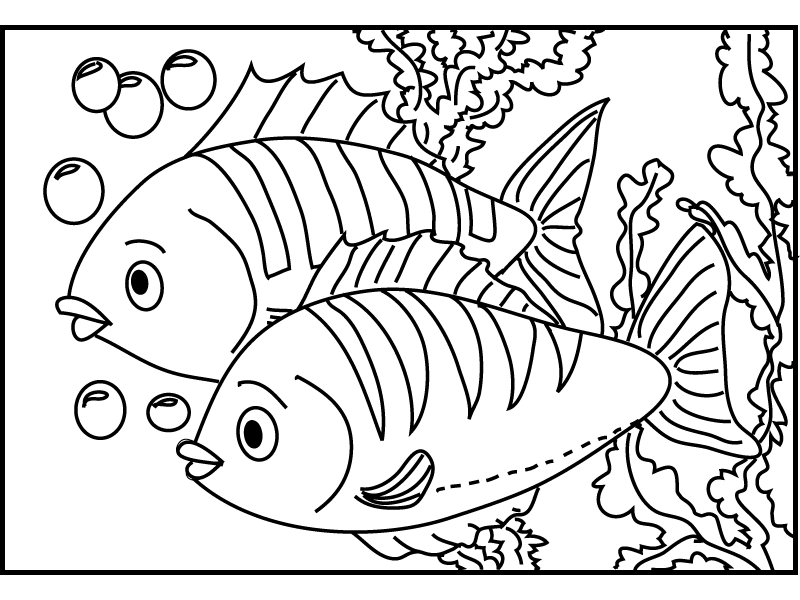 detailed fish coloring pages free printable fish coloring pages for kids cool2bkids coloring fish pages detailed
