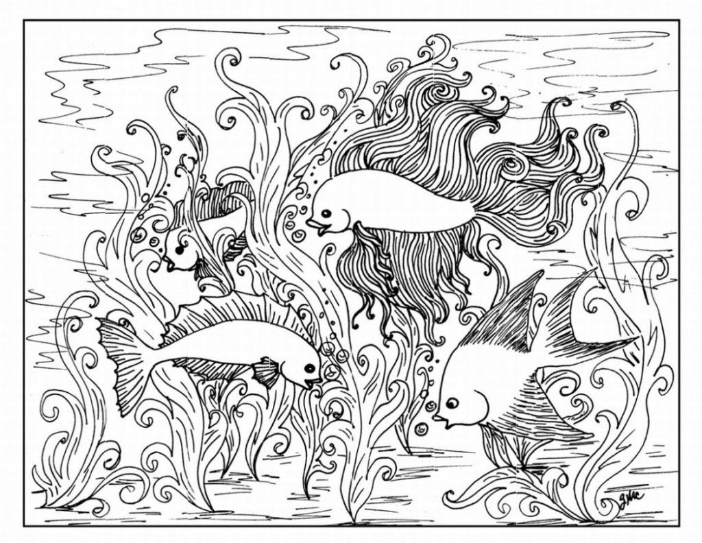 detailed fish coloring pages free printable fish coloring pages for kids cool2bkids fish detailed coloring pages
