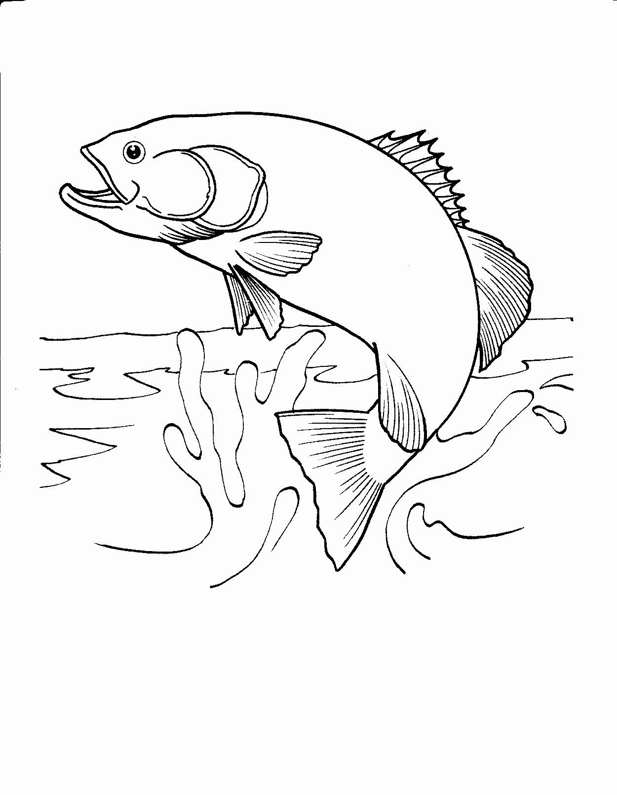 detailed fish coloring pages items similar to adult coloring page quotgold fishquot detailed detailed coloring pages fish