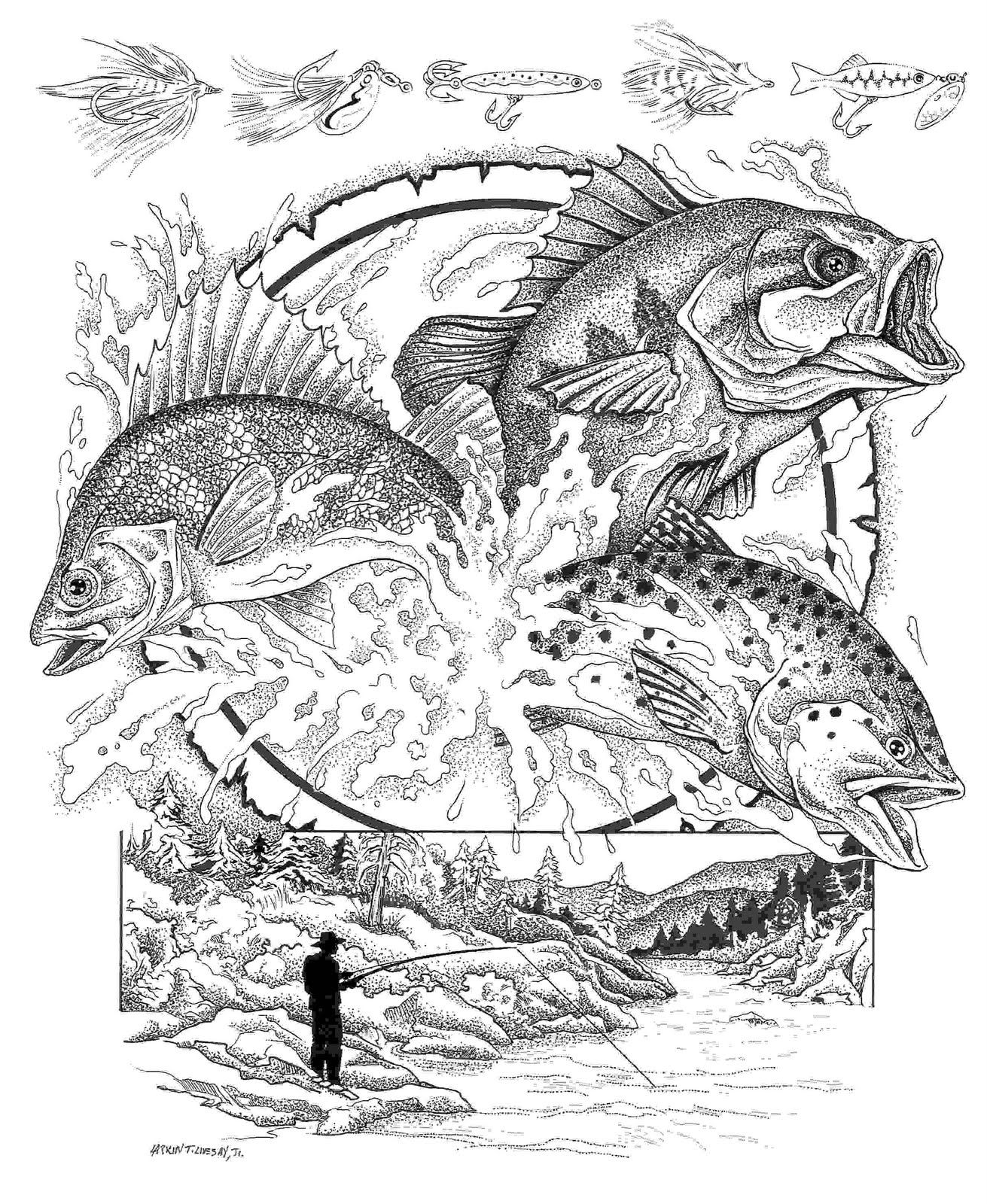 detailed fish coloring pages seashells pictures to color google search detailed fish pages coloring detailed